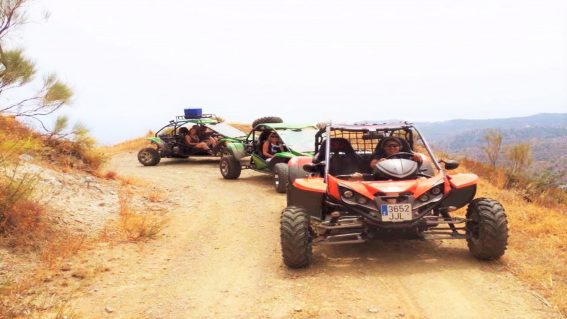 Buggy Buggy Tours