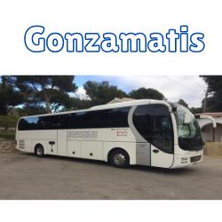 logo Gonzamatis