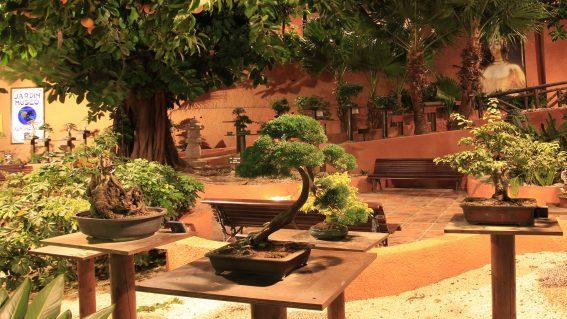 Jardin-Museo del Bonsái