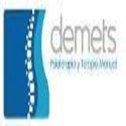 logo Fisioterapia y terapia Demets