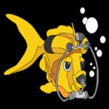 logo Open Water